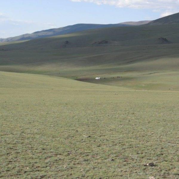 Vayana Josefine in der Mongolei - Aufnahme der mongolischen Steppe